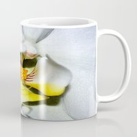 orchid Mugs featuring orchid by  Agostino Lo Coco