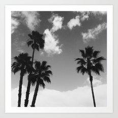 B&W Palms Art Print