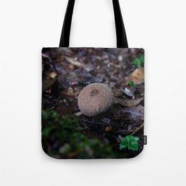 Mushroom in the dead leaves Tote Bag