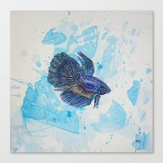Japanese Fighting Fish Canvas Print