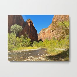 Out of the Narrows Metal Print