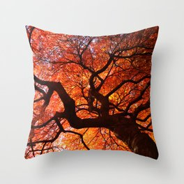Ephemeral - Fall Maple Leaves, Nature Photography Throw Pillow