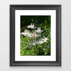 The Doves (Columbine) Framed Art Print