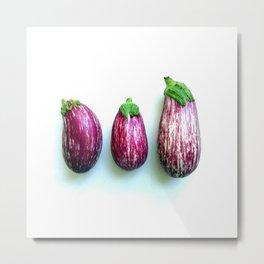 Philippine eggplants Metal Print