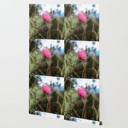 Beautiful pink thistle growing wild Wallpaper