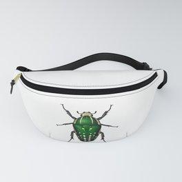 Beetle Mecynorrhina polyphemus confluens female Fanny Pack