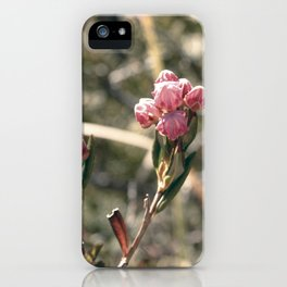 Blossom Burst iPhone Case