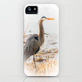 April Blue Heron iPhone Case
