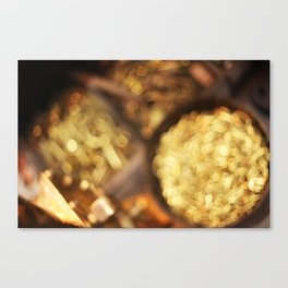 Pirate Booty  Canvas Print