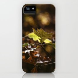 Oak leaves in forest with yellow colors in Autumn iPhone Case