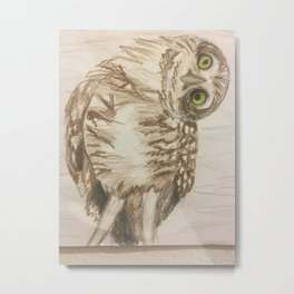 Want to hoot that by me again? Metal Print