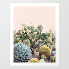 Vintage Desert Cactus Garden Art Print