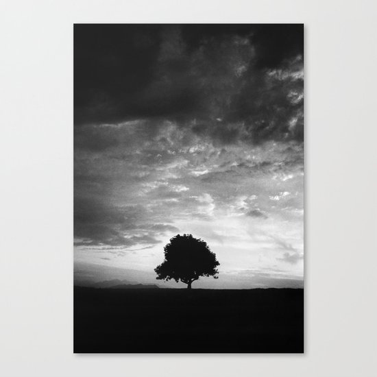 Outlines (IV) - Solitude Canvas Print