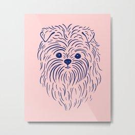 Affenpinscher (Pink and Blue) Metal Print