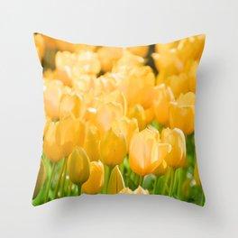 Tulips Field 45 Throw Pillow