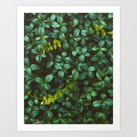 green obsession Art Print