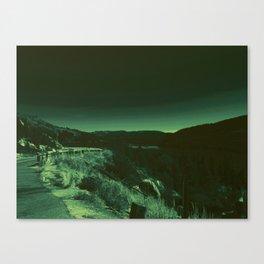 1258 Canvas Print
