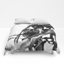 eternal love Comforters