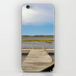 Come And Share The View iPhone Skin