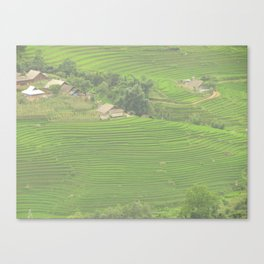 Sapa Rice Fields Canvas Print
