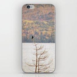 Fall Bird iPhone Skin