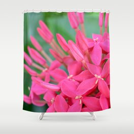 Pink Petals CR Shower Curtain