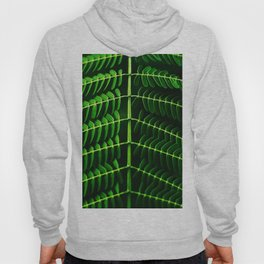Leafed Branches Hoody