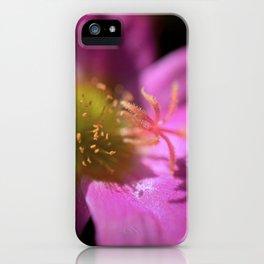 Portulaca iPhone Case