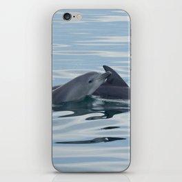 Baby Bottlenose Dolphin iPhone Skin