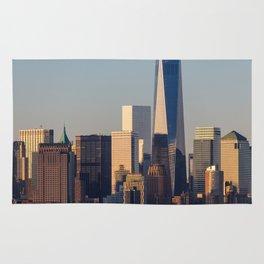 NEW YORK CITY 18 Rug