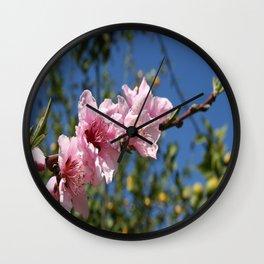 Peach Tree Blossom Against Blue Sky Wall Clock