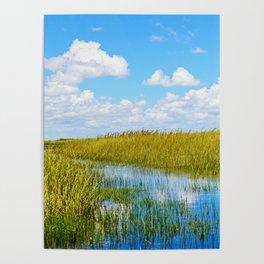 Florida Welands Poster