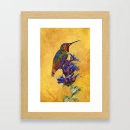Allen's Hummingbird on Bee Balm Framed Art Print