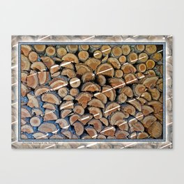 FIREWOOD WAITING IN THE WOODSHED Canvas Print