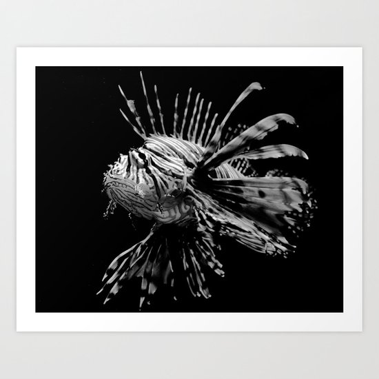 Lion Fish Art Print