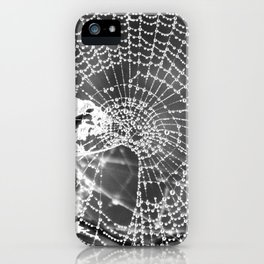 Raindrop Covered Spiderweb iPhone Case