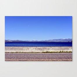 Seagull detour Canvas Print