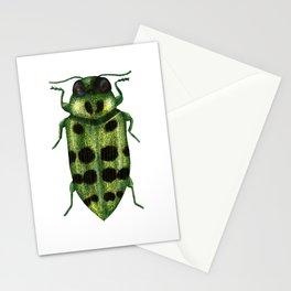 Palmar Festiva Stationery Cards