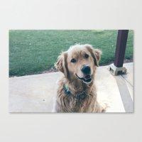 golden retriever Canvas Prints featuring Golden Retriever by CallieDavis