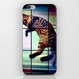 Cat (mosaico) iPhone Skin
