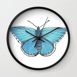 Beautiful Blue Endangered Butterfly Wall Clock