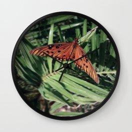 Beautiful Butterfly  Wall Clock