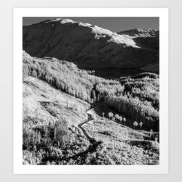 Into The Hills Art Print