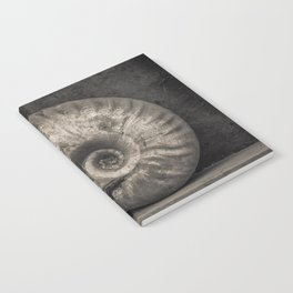 Ammonite Fossil in Sepia Notebook