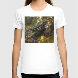 Crab Smiling T-shirt
