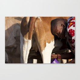 Morning Milk Canvas Print