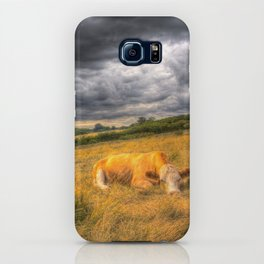 The Resting Cows iPhone Case