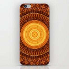 Chamber of Light Mandala iPhone Skin