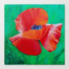 Single Poppy Canvas Print