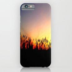 Sunset Reeds iPhone 6s Slim Case
